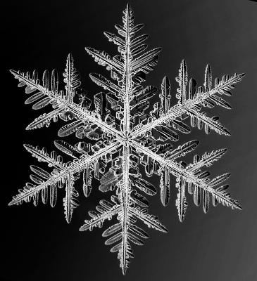 snowflake400