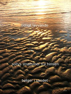 Anne Voel Haiku17-2
