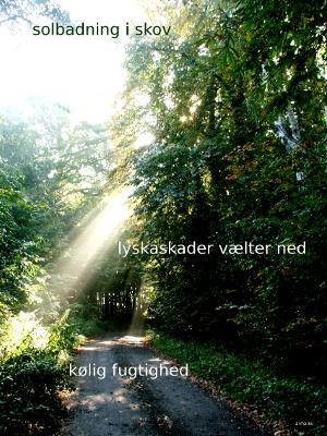 Anne Voel Haiku17-5