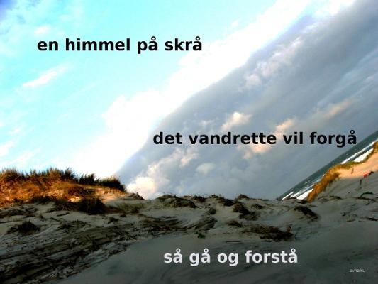 Anne Voel vink1